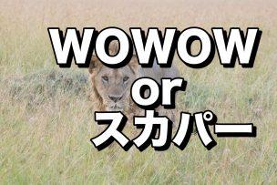 wowow or skpa