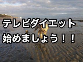 テレビダイエット 始めましょう!!