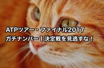 ATPツアー・ファイナル2017 ガチナンバー1決定戦を見逃すな!